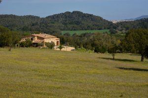 Mas Gall countryside